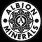 Chelazione Albion International Inc.